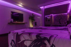 Motel viena Guadalajara Junior Suite